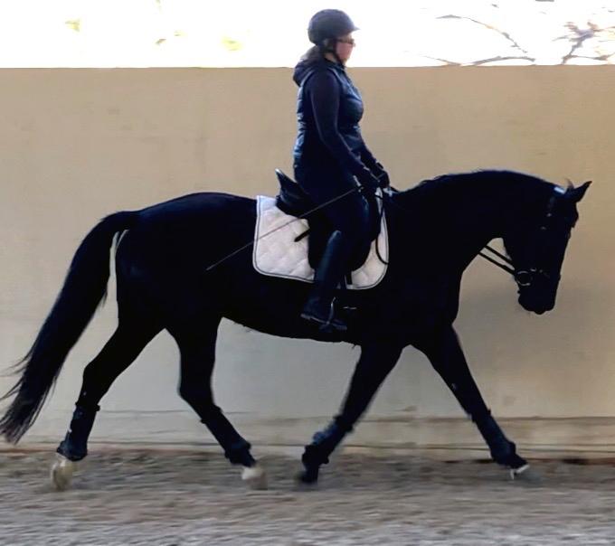 Being in Balance horseback riding